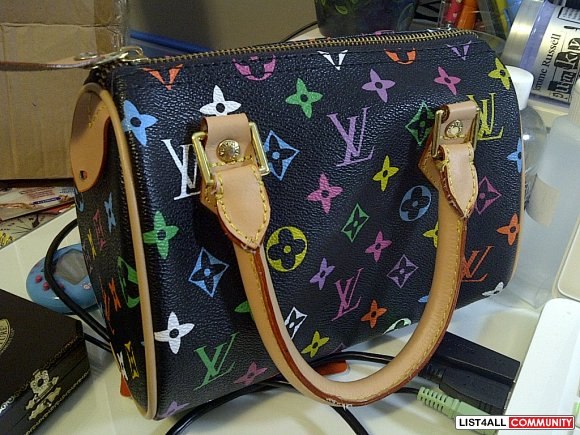LV LOUIS VUITTON purse
